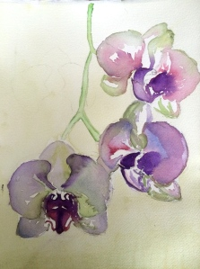 Orchid Study  Watercolor on Arches paper