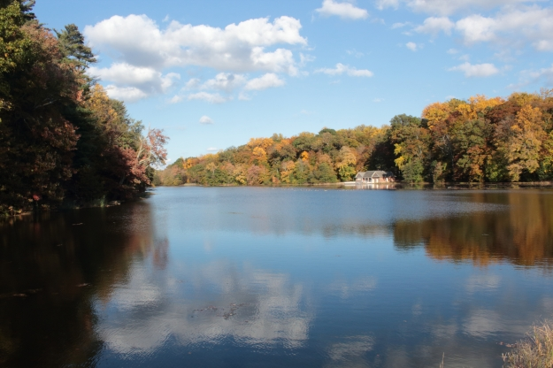 autumn-lake-unsaturated