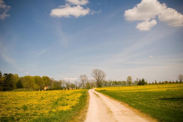 midwest-landscape